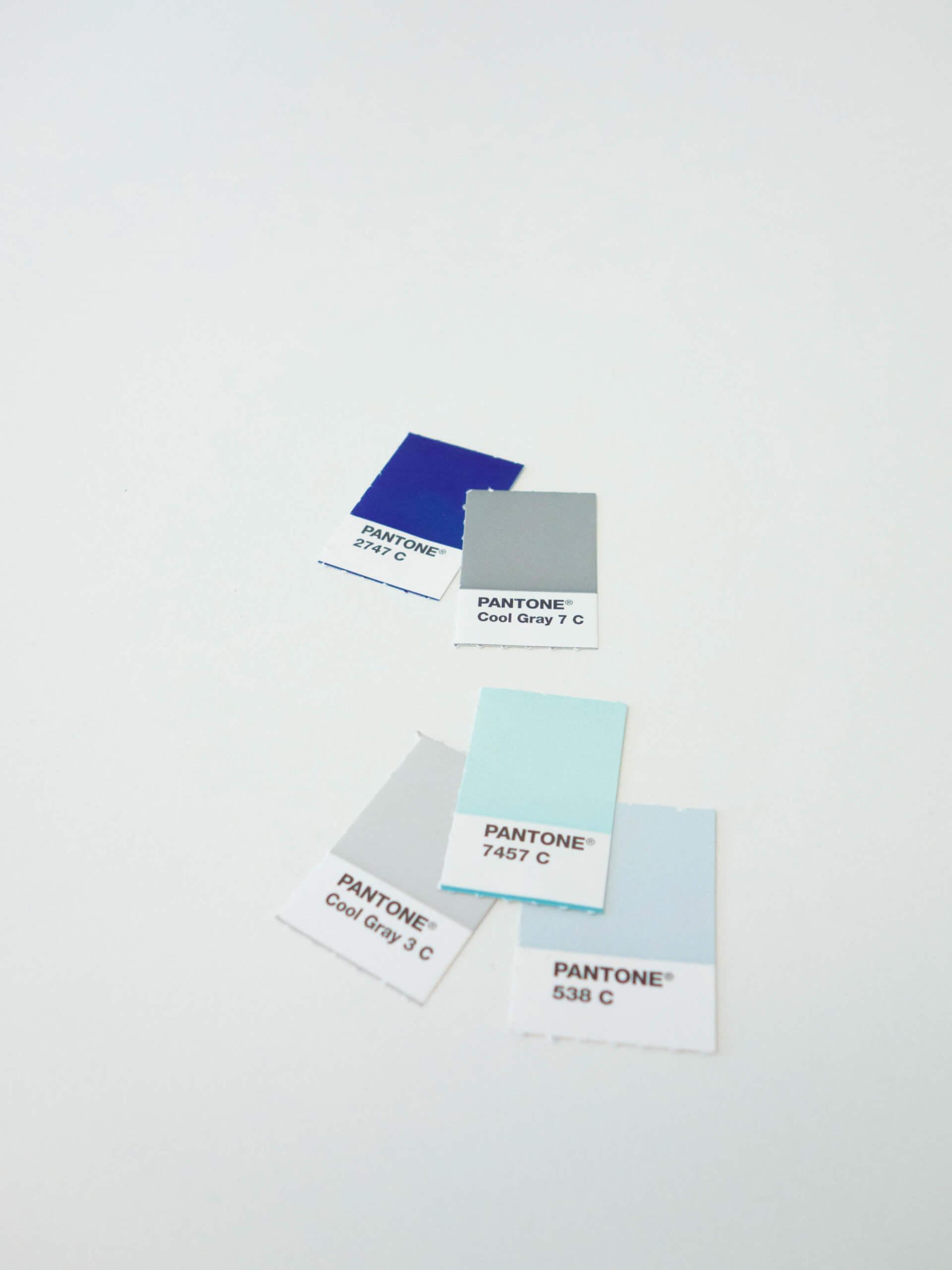 Farbpalette mit Pantonechips für Branding